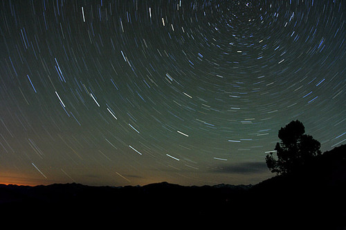 star trails in King's Canyon National Park in California