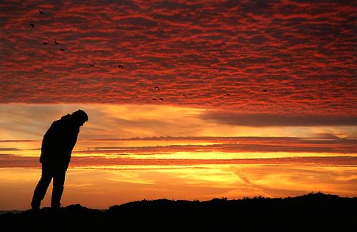sunset in san mateo california