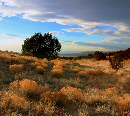 New Mexico Landscape by Mike Pedroncelli at flickr