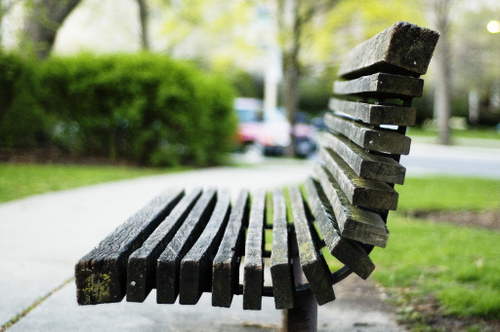 Oakparkbench_by_paul_qoyette_at_flickr